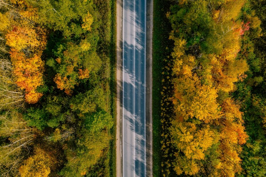 Aerial view of road in autumn forest. Beautiful landscape with rural road
