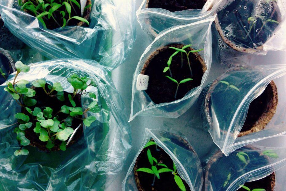 Sustainability greenery